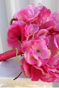 pink-ortansia